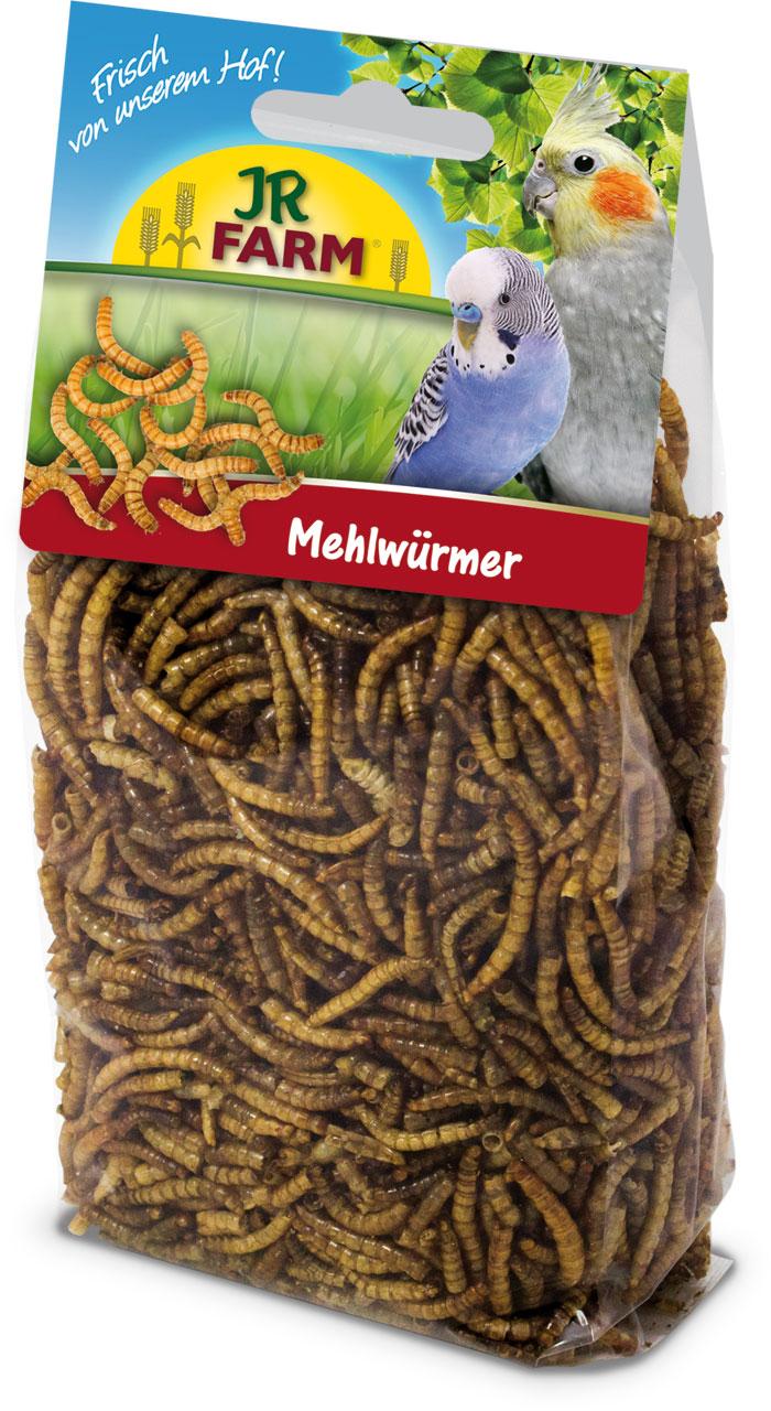 JR FARM Mehlwürmer